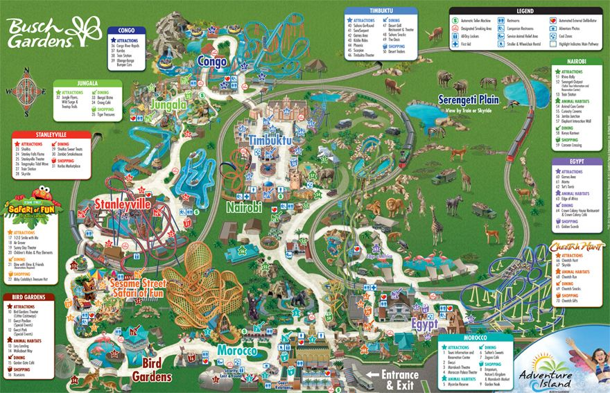 80d9a8958e39604f8dacf541fd091b77 - Busch Gardens Tampa Things To Do