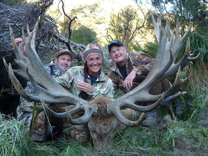 Spey Creek Trophy Hunting New Zealand Red Stag Elk Hunts