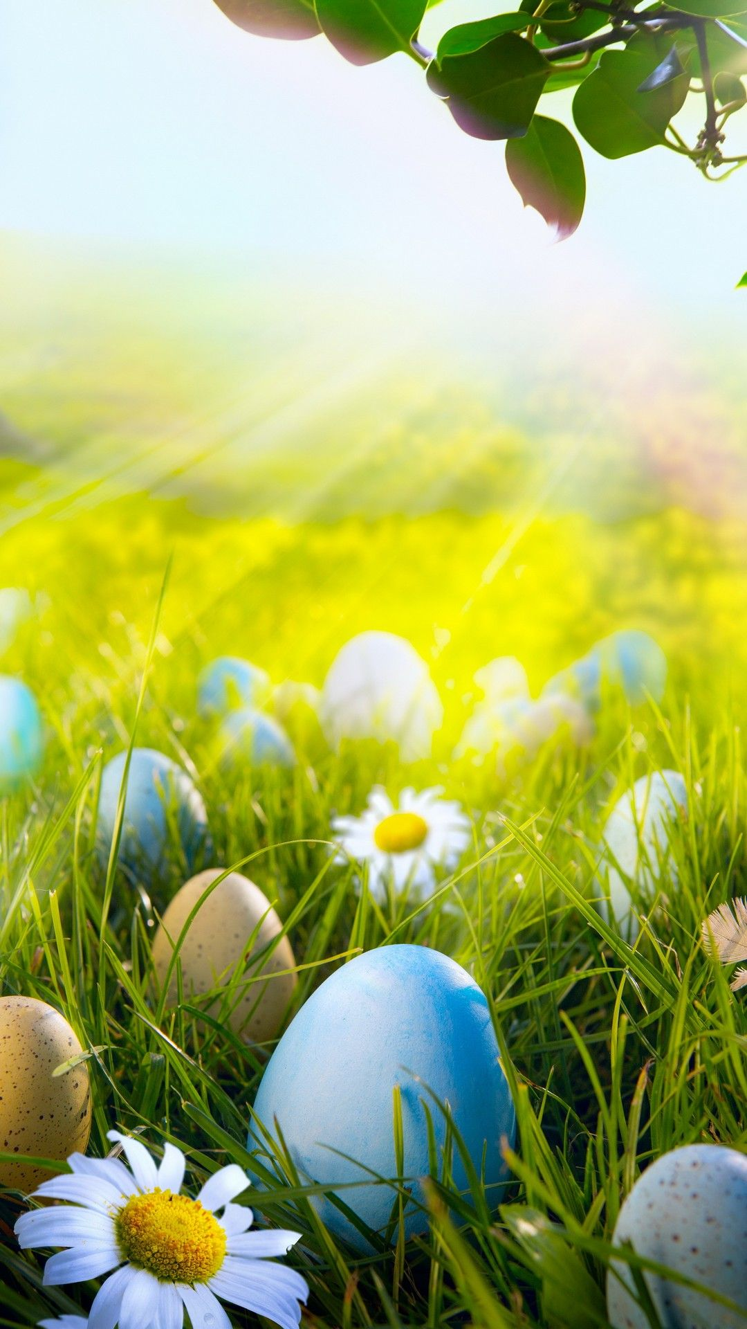 Spring Wallpaper Android - Best Android Wallpapers ...