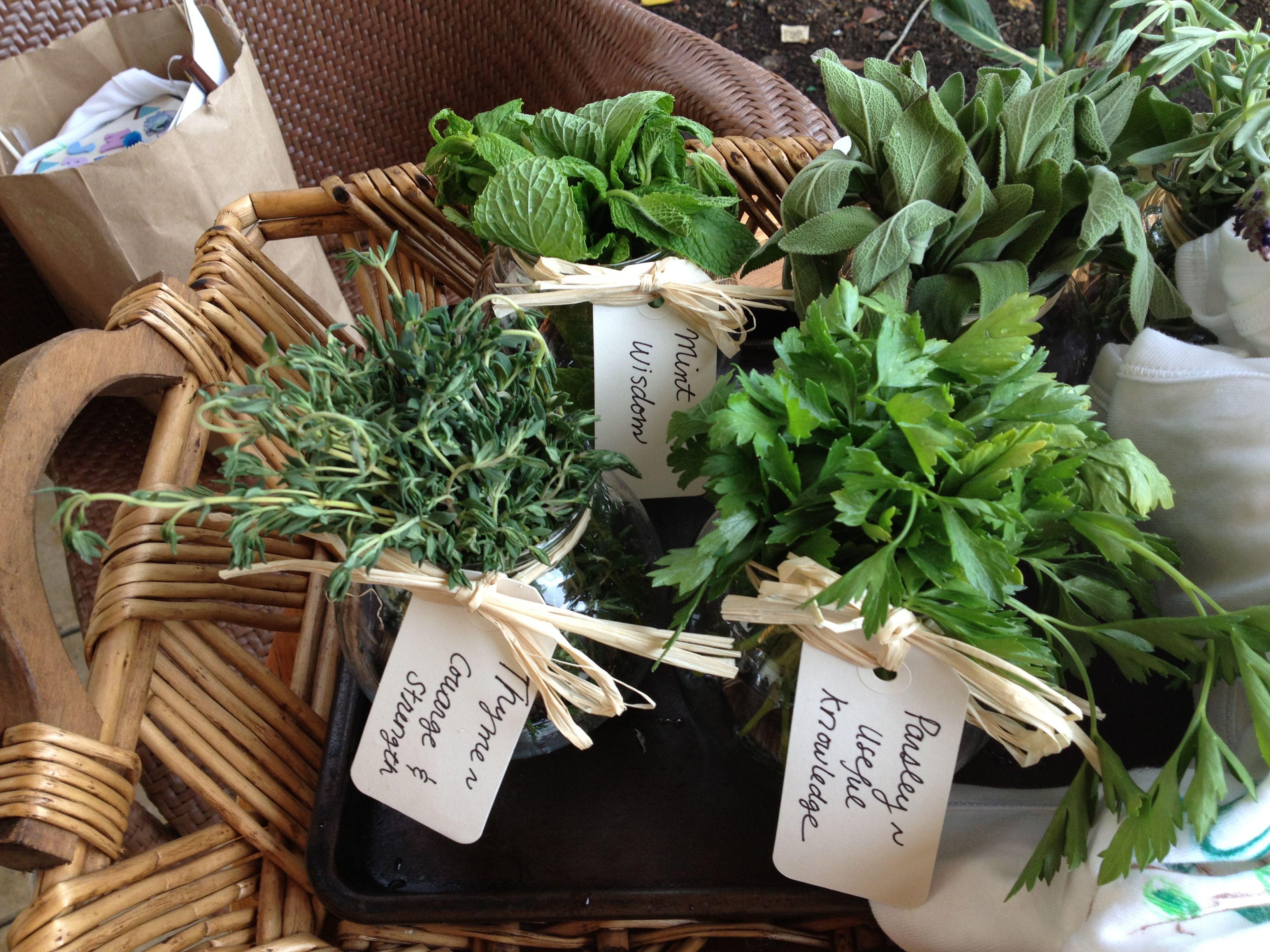 Best 25 Herb Centerpieces Ideas On Pinterest Herb