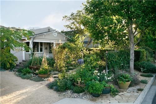 The front yard of this home has been turned into a productive and beautiful kitchen garden where edible ornamentals are grown both in the ground and in containers.