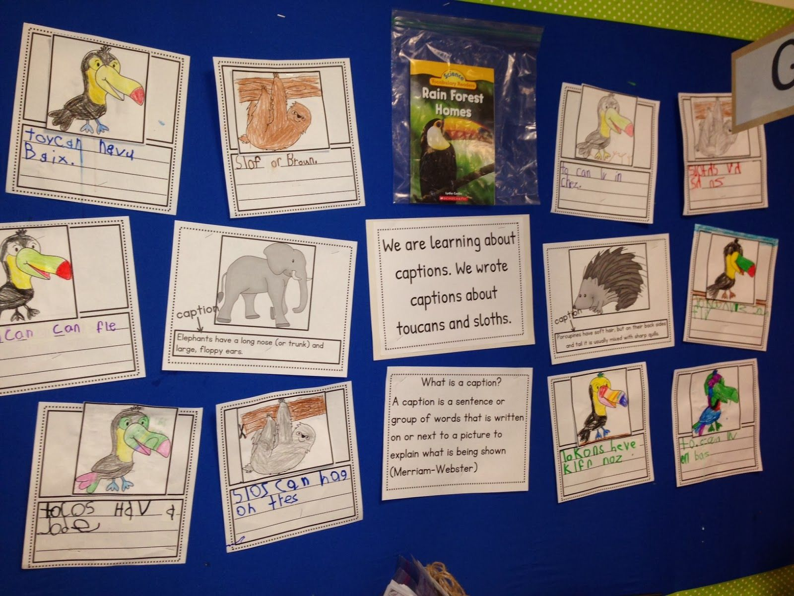 Writing Captions Writers Workshop Kindergarten Nonfiction Text Features Nonfiction Texts [ 1200 x 1600 Pixel ]