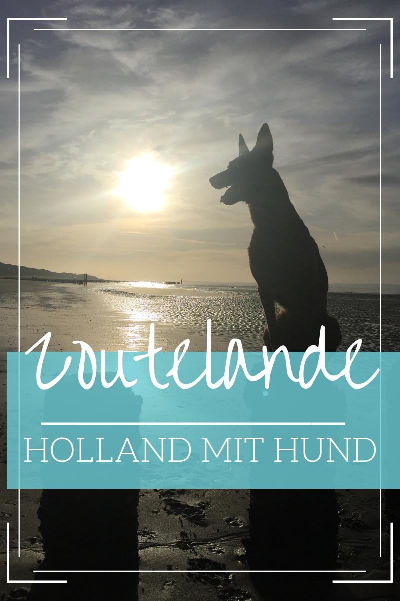 Tipps Fur Zoutelande Mit Kind Hund Unser Liebstes Ziel In Den Niederlanden Reise Inspiration Holland Mit Hund Und Urlaub In Europa