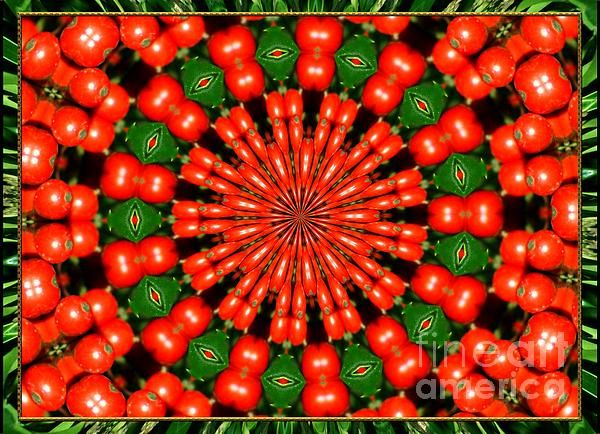 Fine Art Photography - Digital #prints - ABSTRACT HOLLY BERRIES