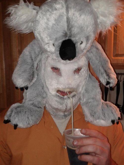 Creepy Stuffed Animals Man In Koala Mask
