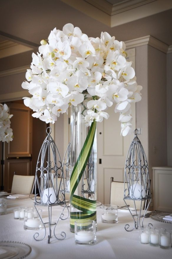 White Orchids Love The Leaves In Vase