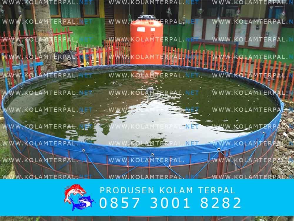 Kolam terpal bulat ; pilihan yang tepat untuk budidaya ikan lele modern dengan sistem bioflok #bioflok #kolamterpal
