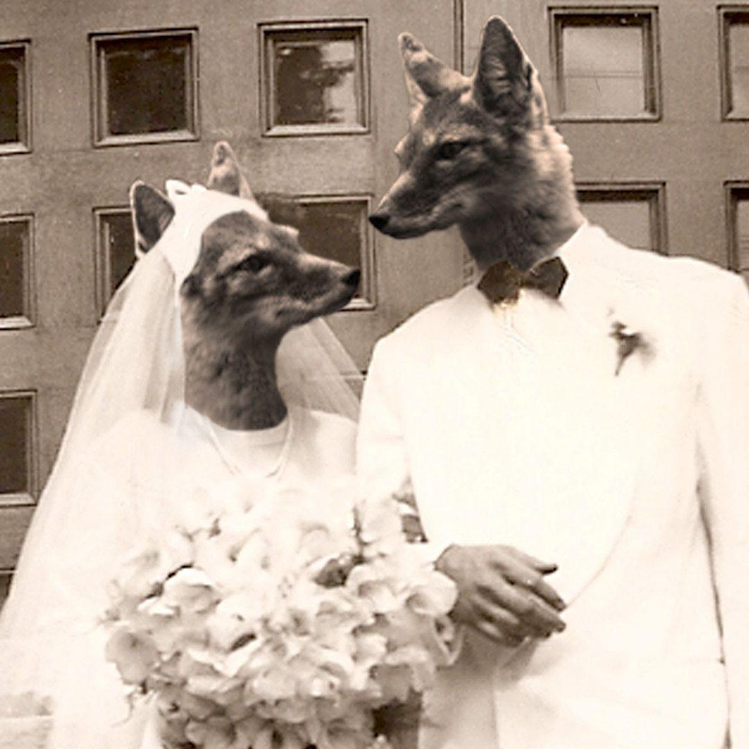 Fox Hollow Wedding: Fox Hollow Wedding 5x7 Anthropomorphic Print