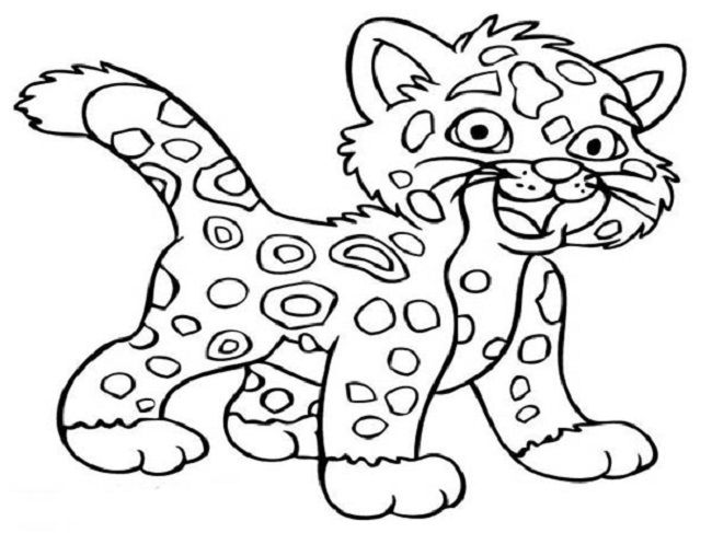 cute baby cheetah coloring pages | coloring Pages | Pinterest | Baby ...