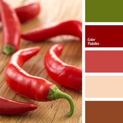 Bright Colors Red Color Brown Palettes Of Chili Pepper Orange And Green Saturated Claret