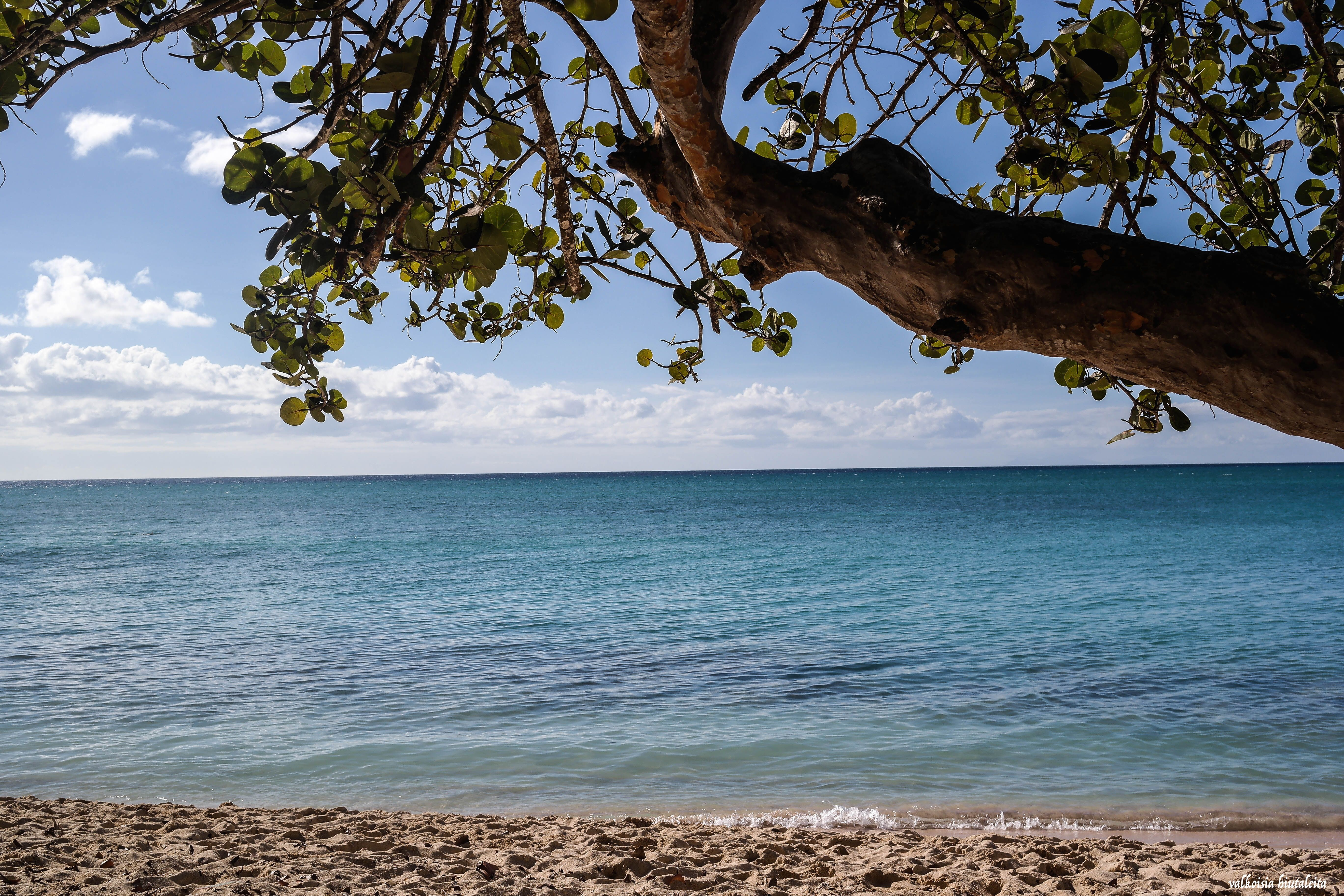 Guadeloupe, one of my favourite places on earth.