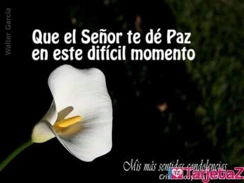 Pin by Laura Avila Terrones on Condolencias Pinterest - condolence messages