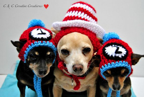 Thing 1 and Thing 2 Dog Hat: by C&C Creative Creations (So Cal, USA) - if you only have one dog, you're going to need 2 more to go with it...