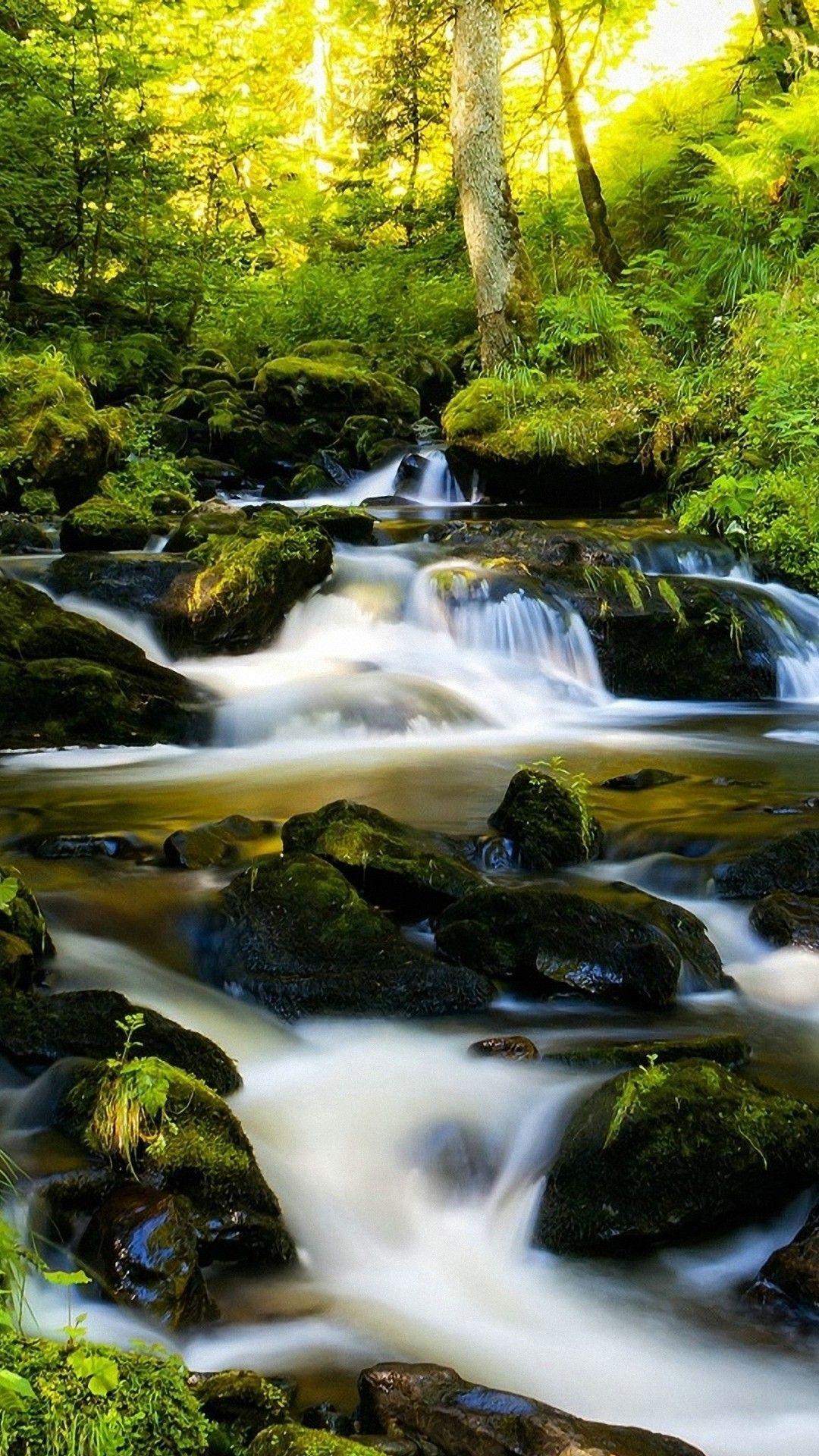 Green Nature Nature Iphone Wallpaper 3d