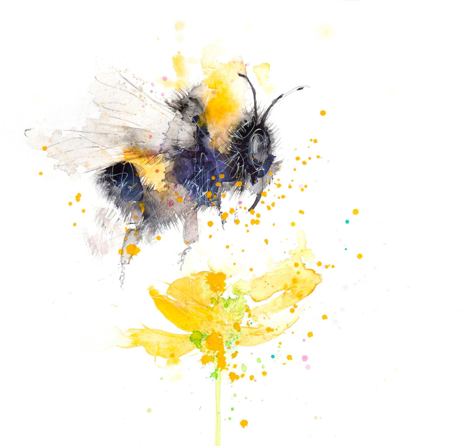 fine art archival watercolour print BUMBLE BEE on a buttercup insect ...