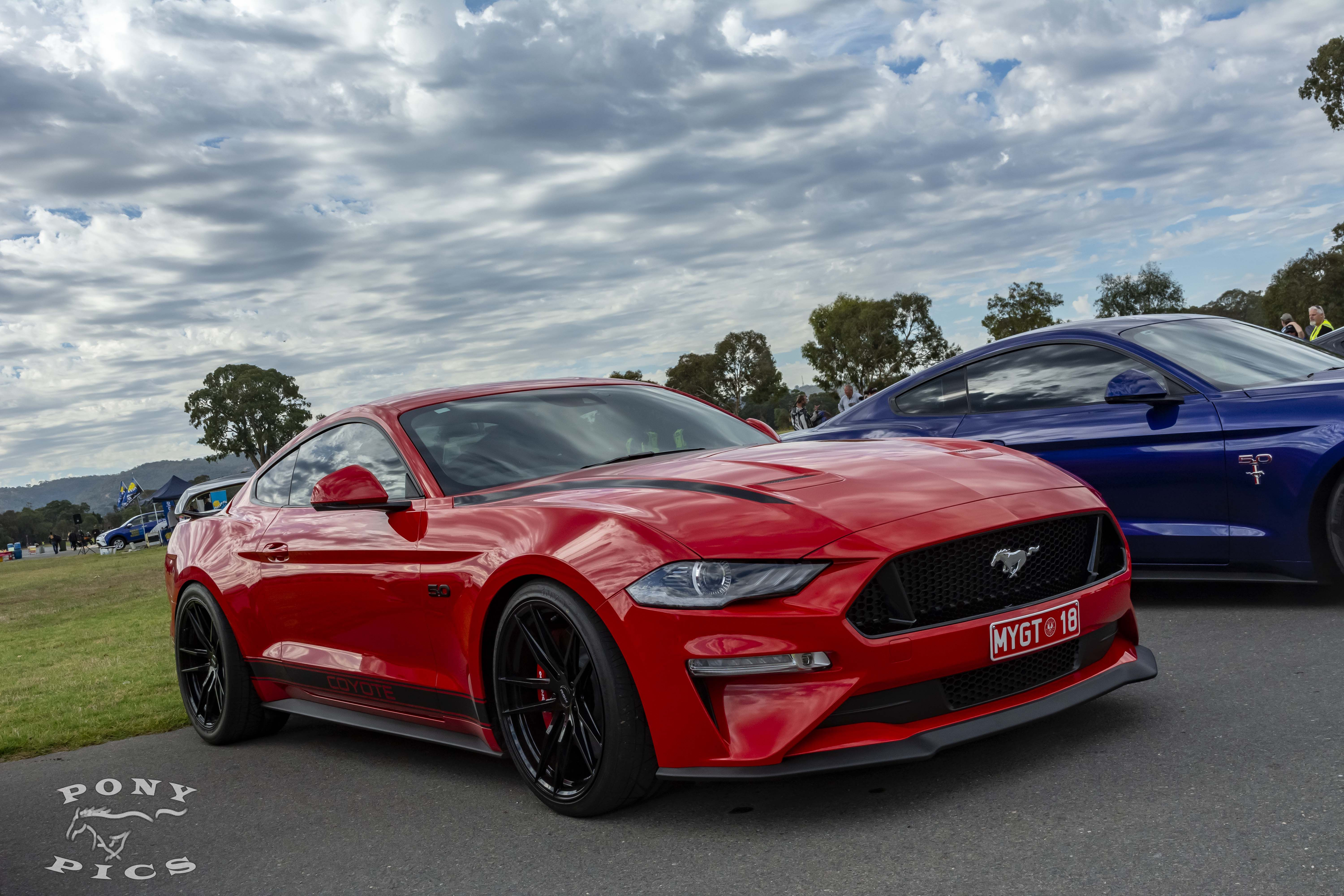 Pin By Danny Williams On Mustang 2018 Mustang Gt Mustang Gt