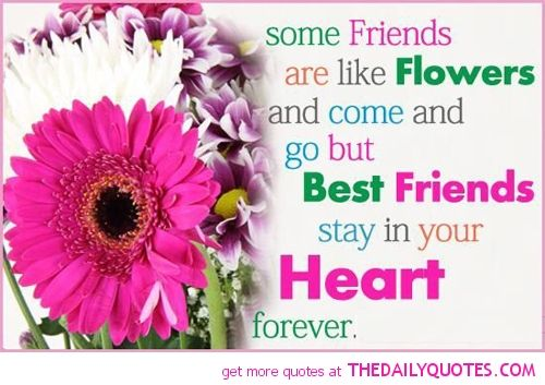 Friends Are Like Flowers Quotes Friends Best Friend Quotes Quotes