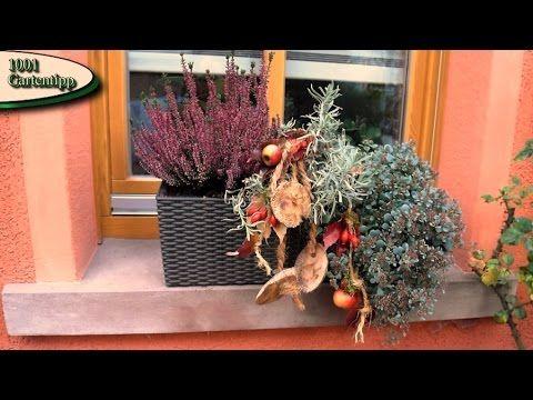 Gartentipp oktober 1003 deko f r die herbstbepflanzung in - Fensterbrett dekorieren ...