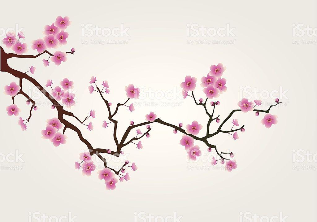 Illustration Of Japanese Cherry Tree Blossom Branch Cherry Blossom Art Cherry Blossom Painting Cherry Blossom Drawing