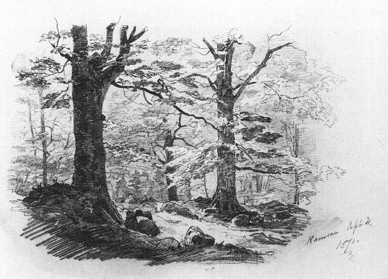 Forest scene at ramsau sketchy goodness pinterest for Forest scene drawing