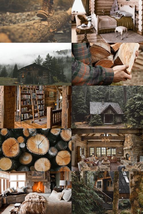Building Log Cabin Woods
