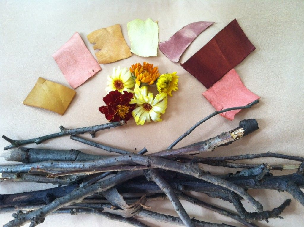 Pin By Ermie Jpd On Inspired Natural Dyes Textile Arts Center