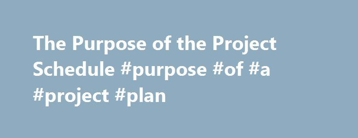 The Purpose of the Project Schedule #purpose #of #a #project #plan - project plan