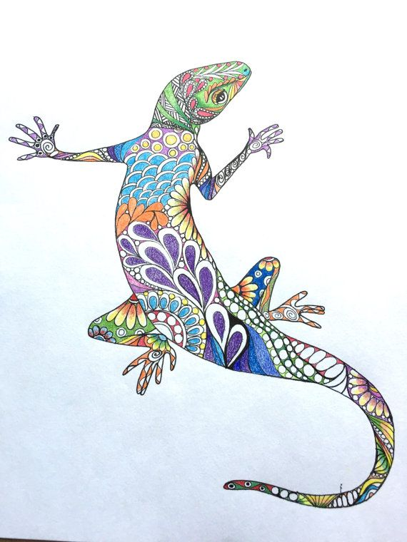 Zentangle lizard,colored lizard,original lizard drawing ...