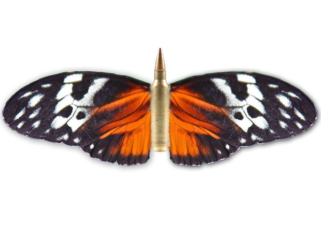 Bullet with butterfly wings