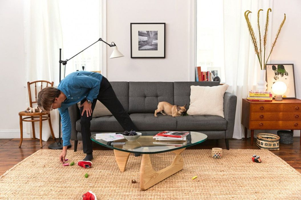 Outstanding Pet Friendly Living Room Furniture Pet Friendly Living Room Furniture Flat Pack Furniture