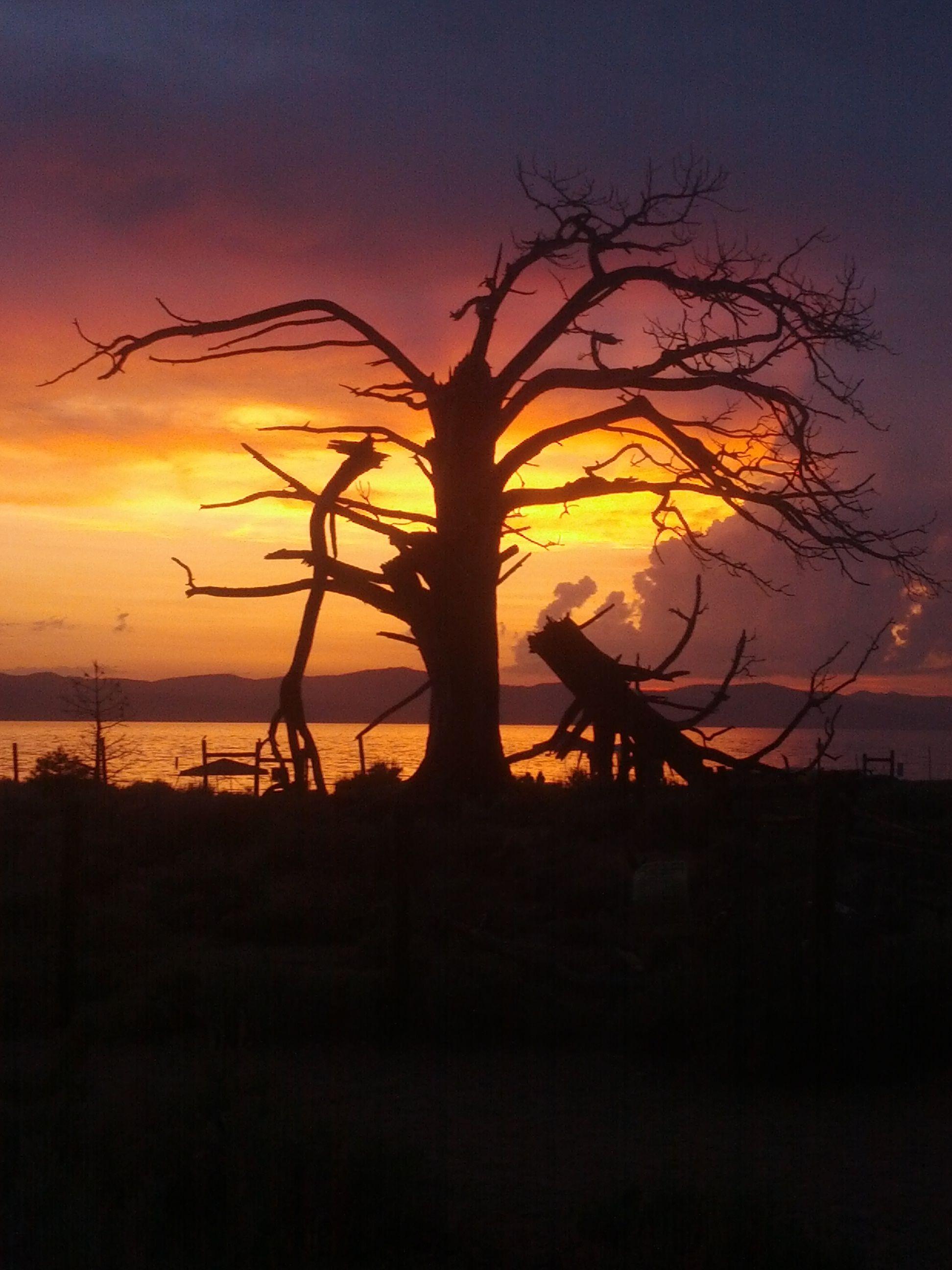 Lake tahoe sunset travel channel pinterest - Nevada Beach Parking Lotnevadaflatdogbeachessunsetlake Tahoeoff
