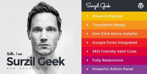 Geek - Personal Resume \ Portfolio WordPress Theme (Portfolio - personal resume