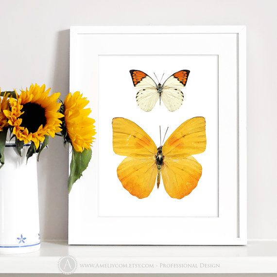 Butterfly Wall Art Printable Insect Art Butterfly Poster Yellow ...