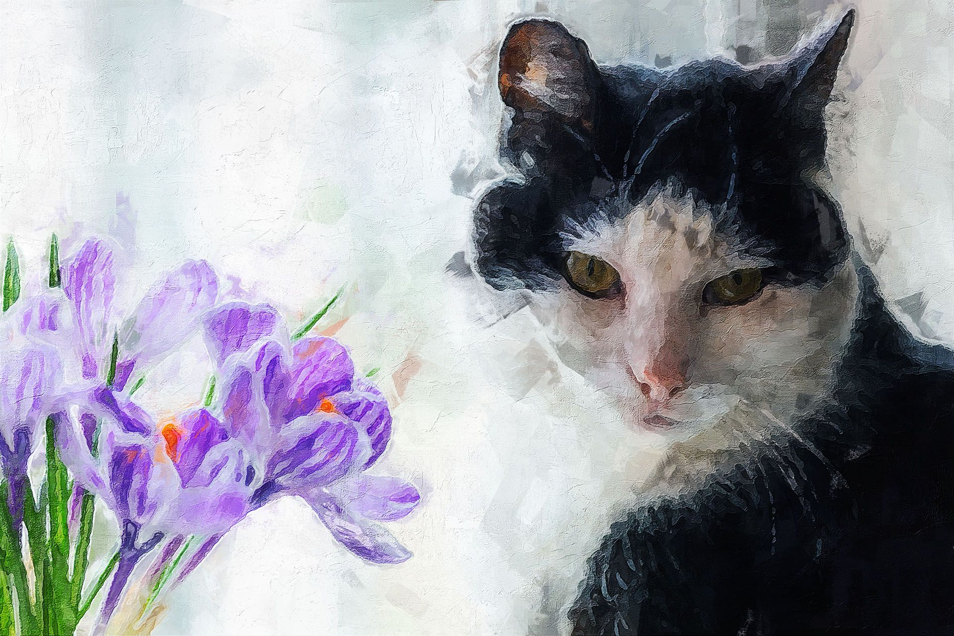 Cat & Flowers Cat flowers, Cats, Animals