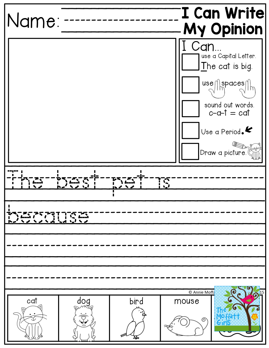 Birds Worksheet First Grade