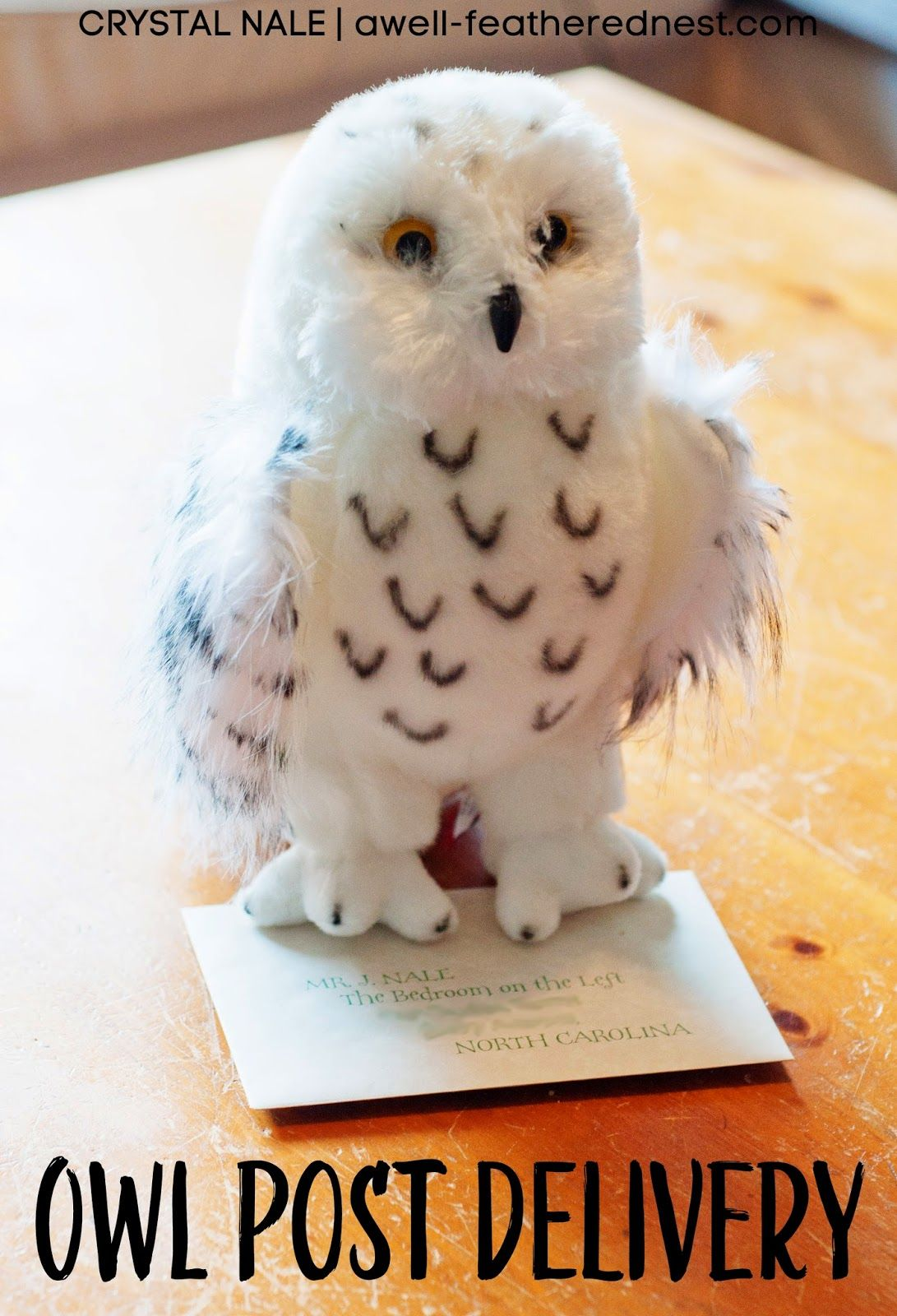 A WellFeathered Nest The Owl Post  Hogwarts Acceptance Letter