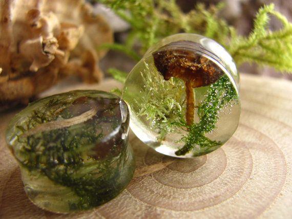Fairy Gauges Wood Resin Piercing Real Plant Organic Gauges Magic Resin Ear Plugs Real flower plugs Ear plugs Resin plug earrings