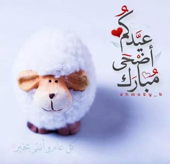 صور تهنئة عيد الأضحى المبارك 2019 للفيسبوك والواتساب فوتوجرافر Eid Al Adha Greetings Eid Wallpaper Eid Stickers