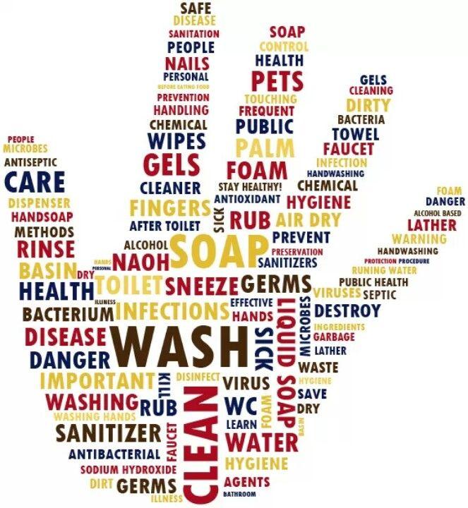 Importance of hand hygiene essay
