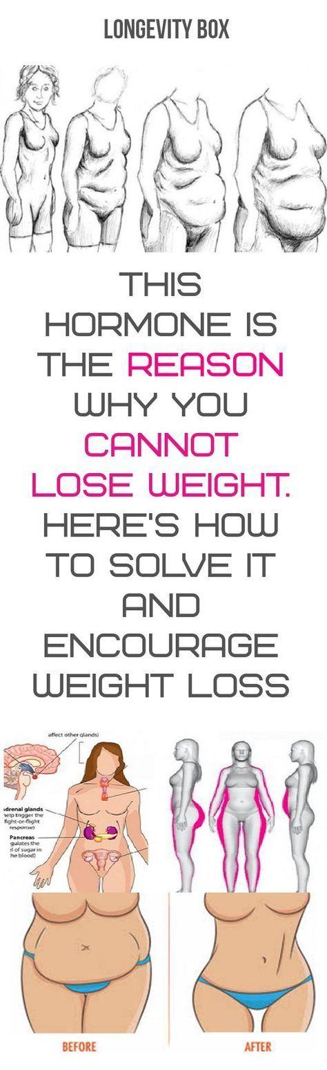 Okara weight loss