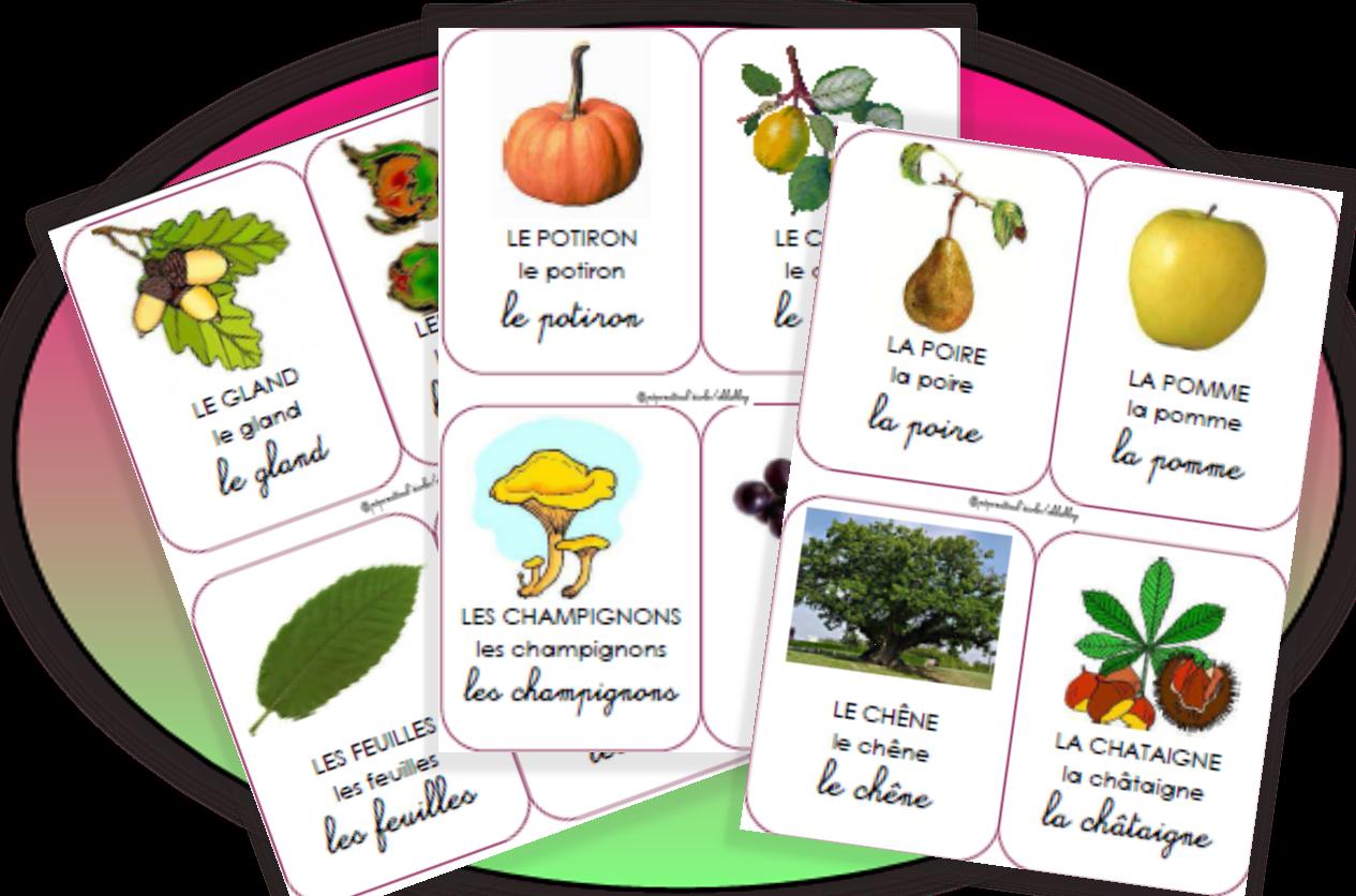 L 39 automne images pour lexique imagier automne - Fruits automne maternelle ...