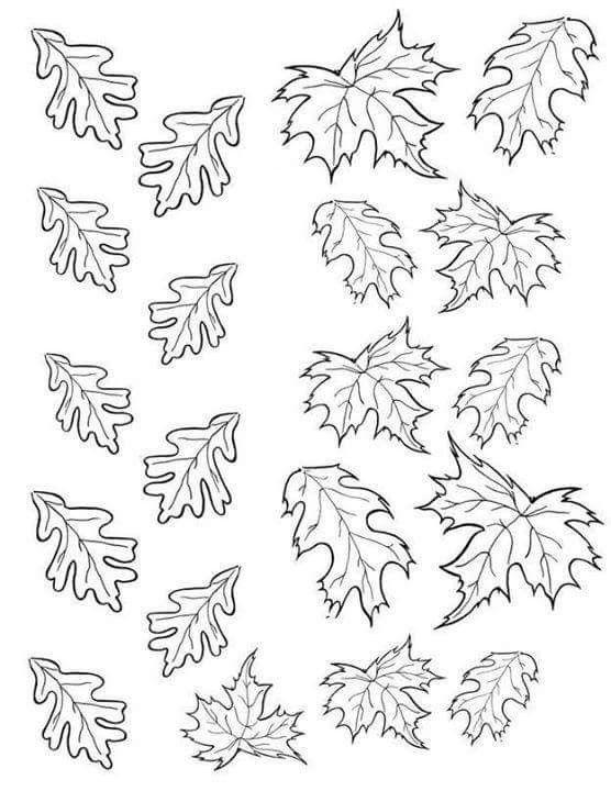 pin di Диана su templates  foglie modello foglia idee