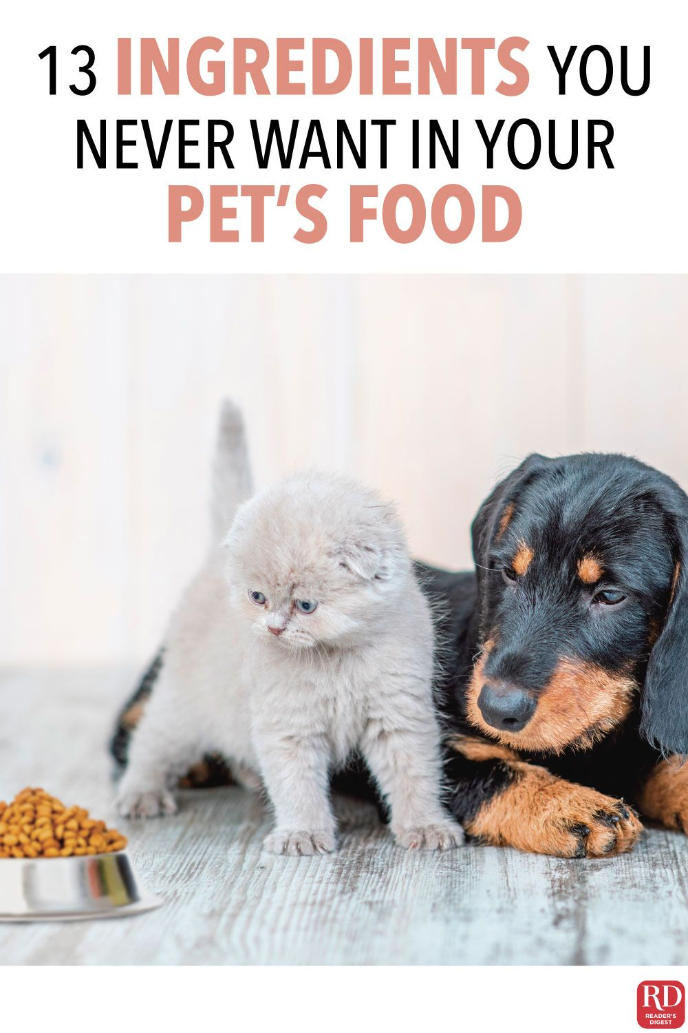 13 Ingredients You Never Want in Your Pet's Food in 2020