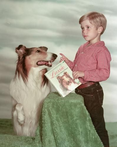 """Lassie...I loved this show, when I was a kid, and I wanted a dog like Lassie. I remember """"Santa"""" bringing me a big stuffed animal that was a collie, and I was soooo happy! :)"""