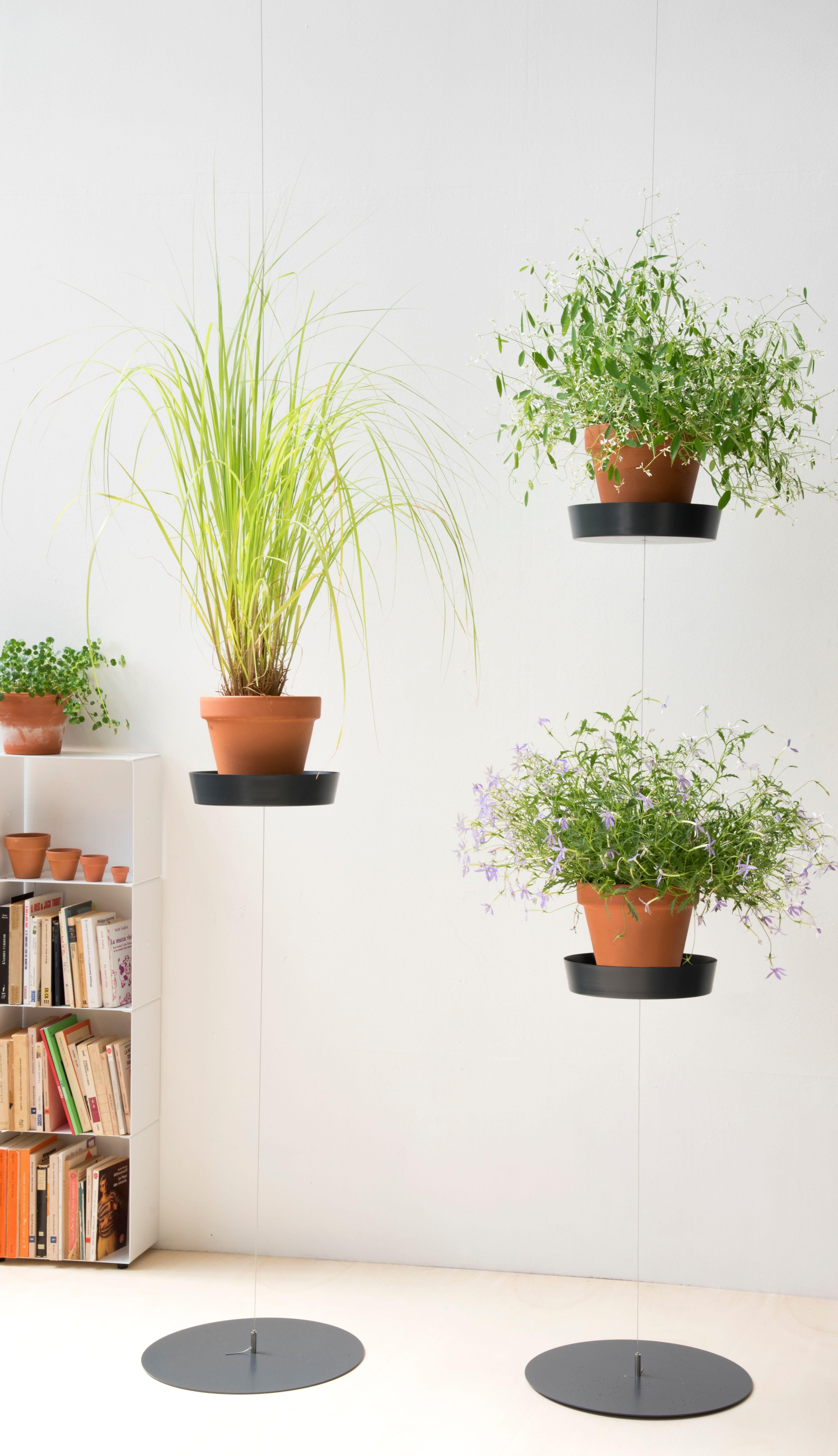 Support Plantes Murale Teepots Decoration Plante Tablettes Pour Plantes Support Plante