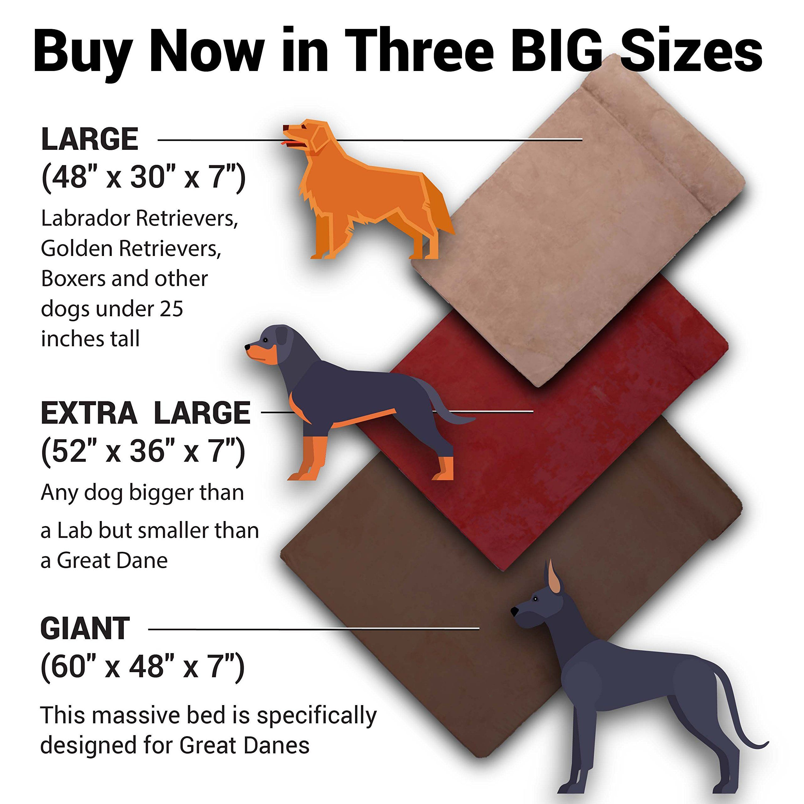 Pin by Glenn Normano on Dog Beds (With images) Big dog