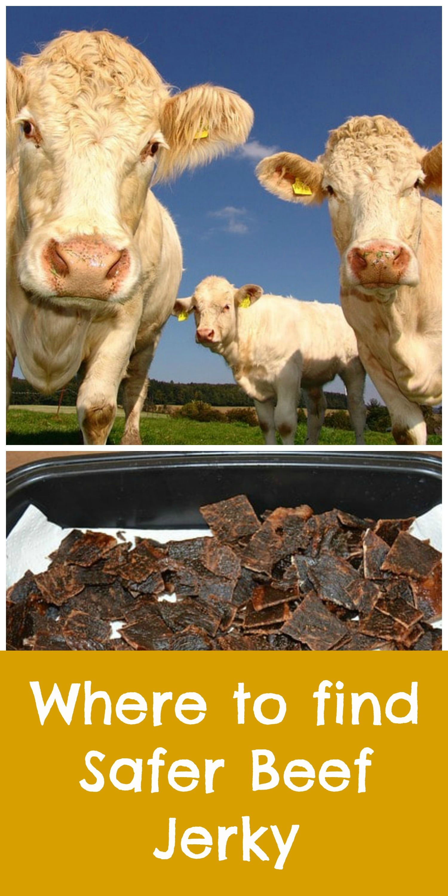 Buy organic beef - Beef Jerky Is Delicious And It S Often Included In Children S Lunch Boxes But It