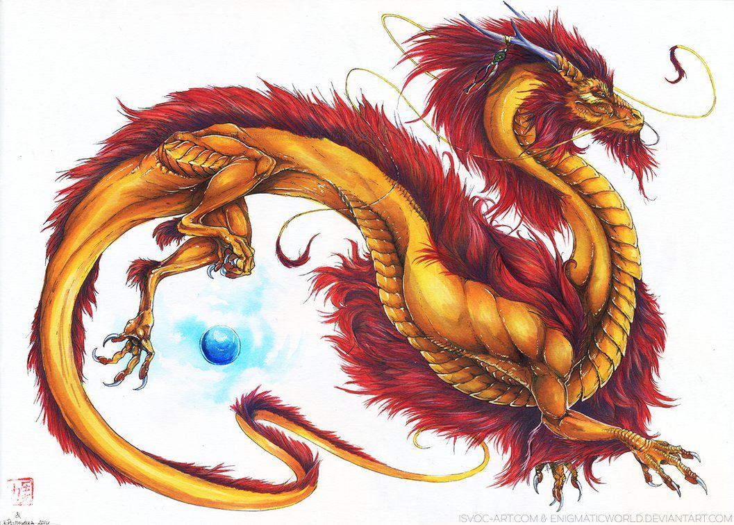 Gold eastern dragon organon mercilon ulotka