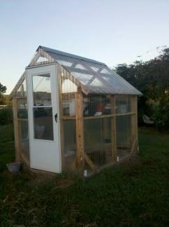 This is the greenhouse that my husband constructed for me.  It is built on 4x4s with 2x4s for the framing.  Our only mistake was in using one layer of panels; we should have used at least 3.  Also, although we had a ventilation fan, we didn't get it installed before we moved.  I used a radiator-style space heater for heat. There is a 3' wide walkway down the center and shelves made from wire mesh on the sides.