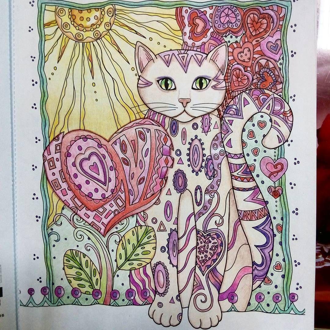 Pin van irina op Котики/ Creative Cats   Katten, Kleurrijk